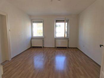 Zimmer 1 (Wohn- /Ess- /Schlafzimmer)