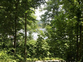 Blick vom Grundstück auf den See